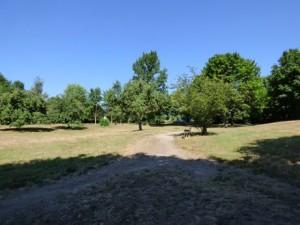 Für den Bereich des Klosterparks wird ein Bebauungsplan aufgestellt.